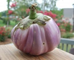 Day 89: Eggplant and 10-Day Pledge Alternatives