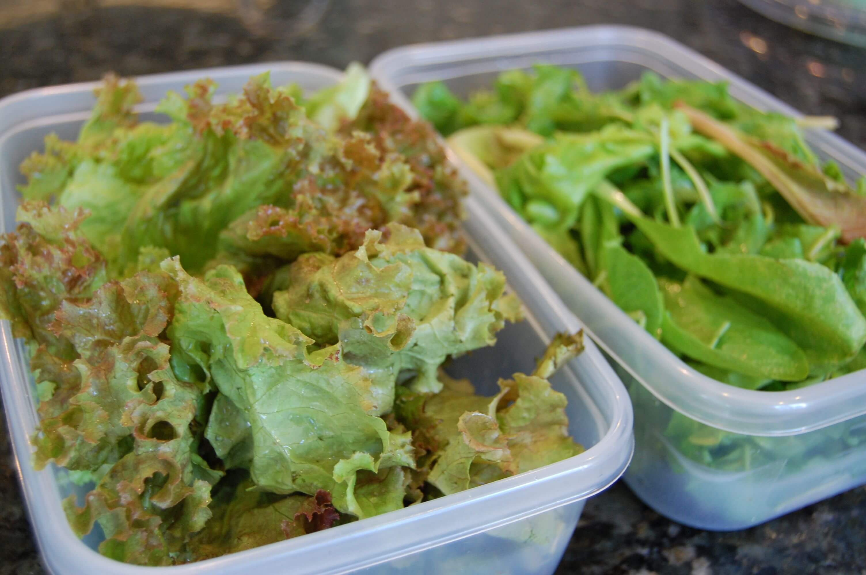Two plastic containers with mixed greens on a counter.