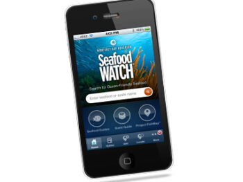 Sea Watch App on 100 Days of Real Food