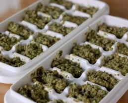 Freezing Pesto in Ice Cube Trays