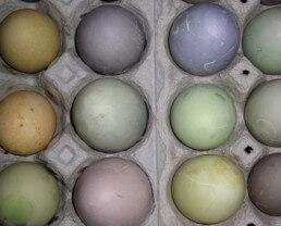 Spoonfed Natural Egg Dyes