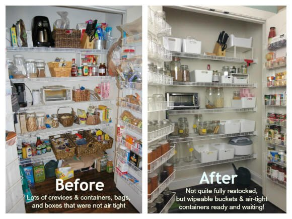Before and after pantry moths: 100 Days of Real Food