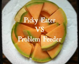 Picky Eater vs. Problem Feeder + Tips on 100 Days of Real Foods