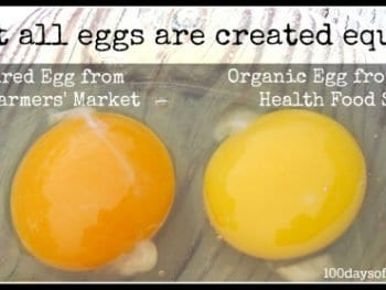 Egg Labels: What To Look For