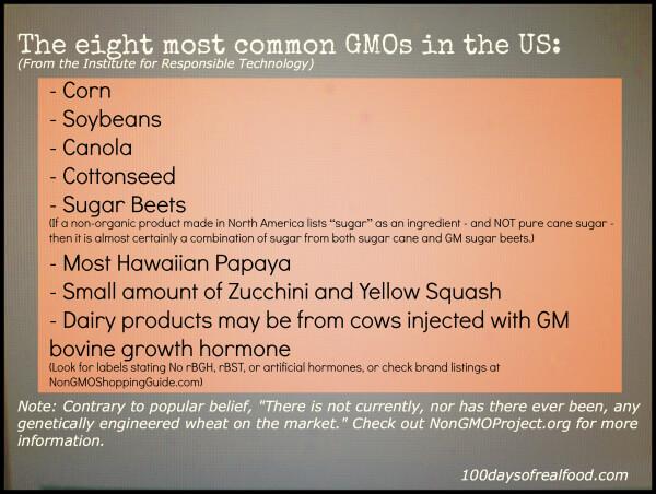 GMO Crop Picture