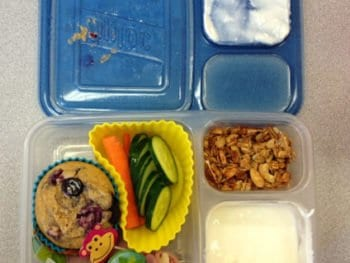 Open Lunch with lid 350x263 - The Life Cycle of a (Packed) School Lunch