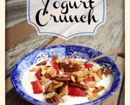Simple Yogurt Crunch
