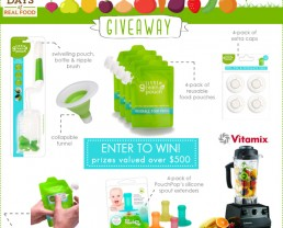 Giveaway: Little Green Pouch + VITAMIX!