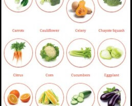 Cook Smarts Prep Cooking Guide