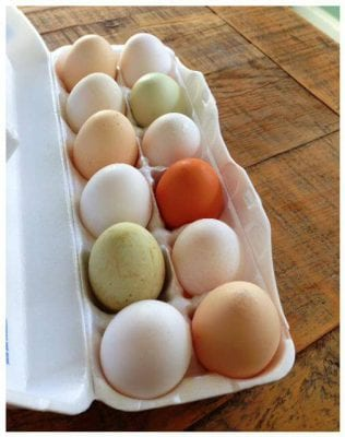 Eggs for Breakfast on 100 Days of #RealFood