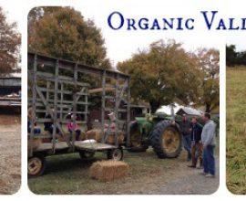 Organic Valley Farm Tour
