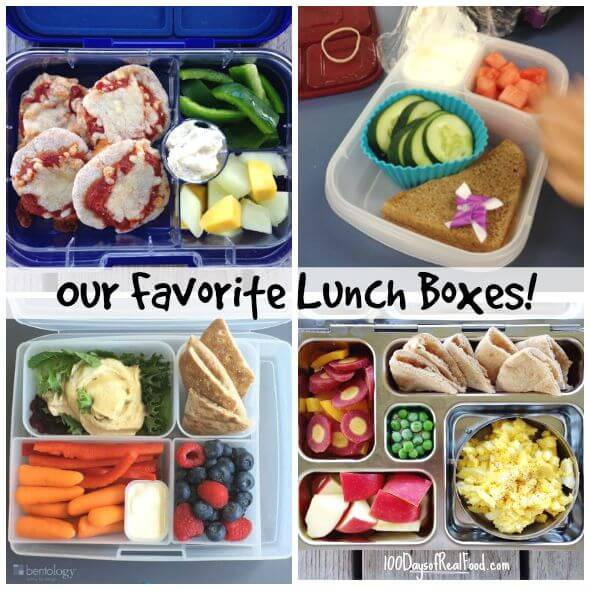 toddler lunch box review our favorite lunch boxes for 100 days of 31088