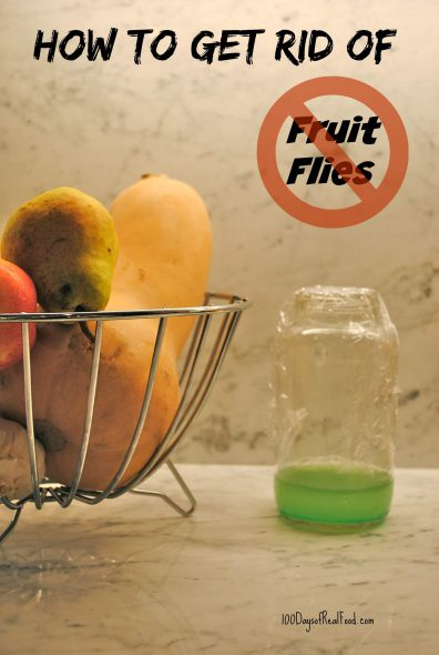 How to get rid of fruit flies from 100 Days of #RealFood