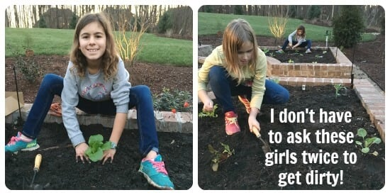Girls Planting Winter Vegetable Garden on 100 Days of Real Food
