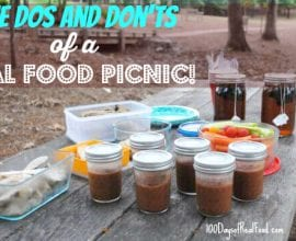 The Dos and Donts of a Real Food Picnic on 100 Days of Real Food