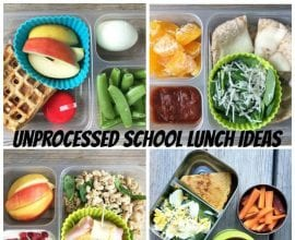 Unprocessed School Lunch Ideas on 100 Days of Real Food