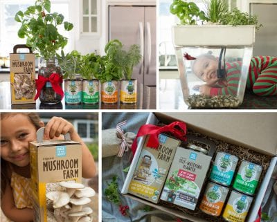 Gift Ideas for Real Foodies - Back to the Roots Ready to Grow Products