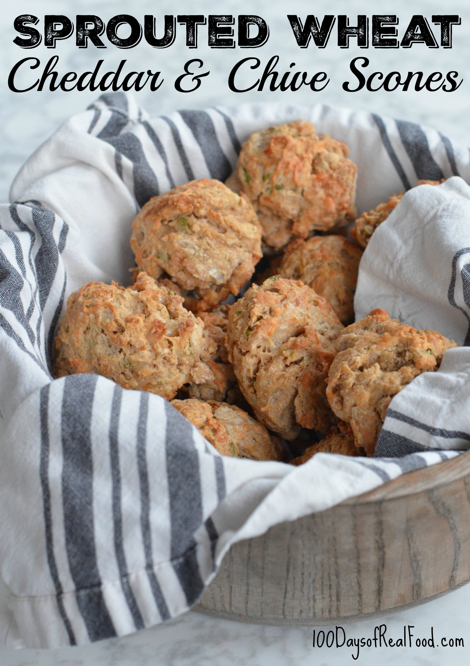 Sprouted Wheat Cheddar and Chive Scones on 100 Days of Real Food