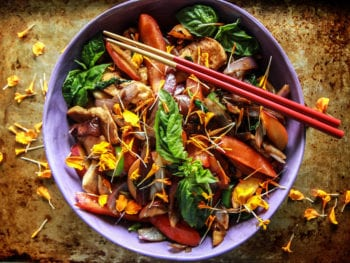 Chicken Nectarine Stir Fry (+ how food sensitivities were making us sick) 1