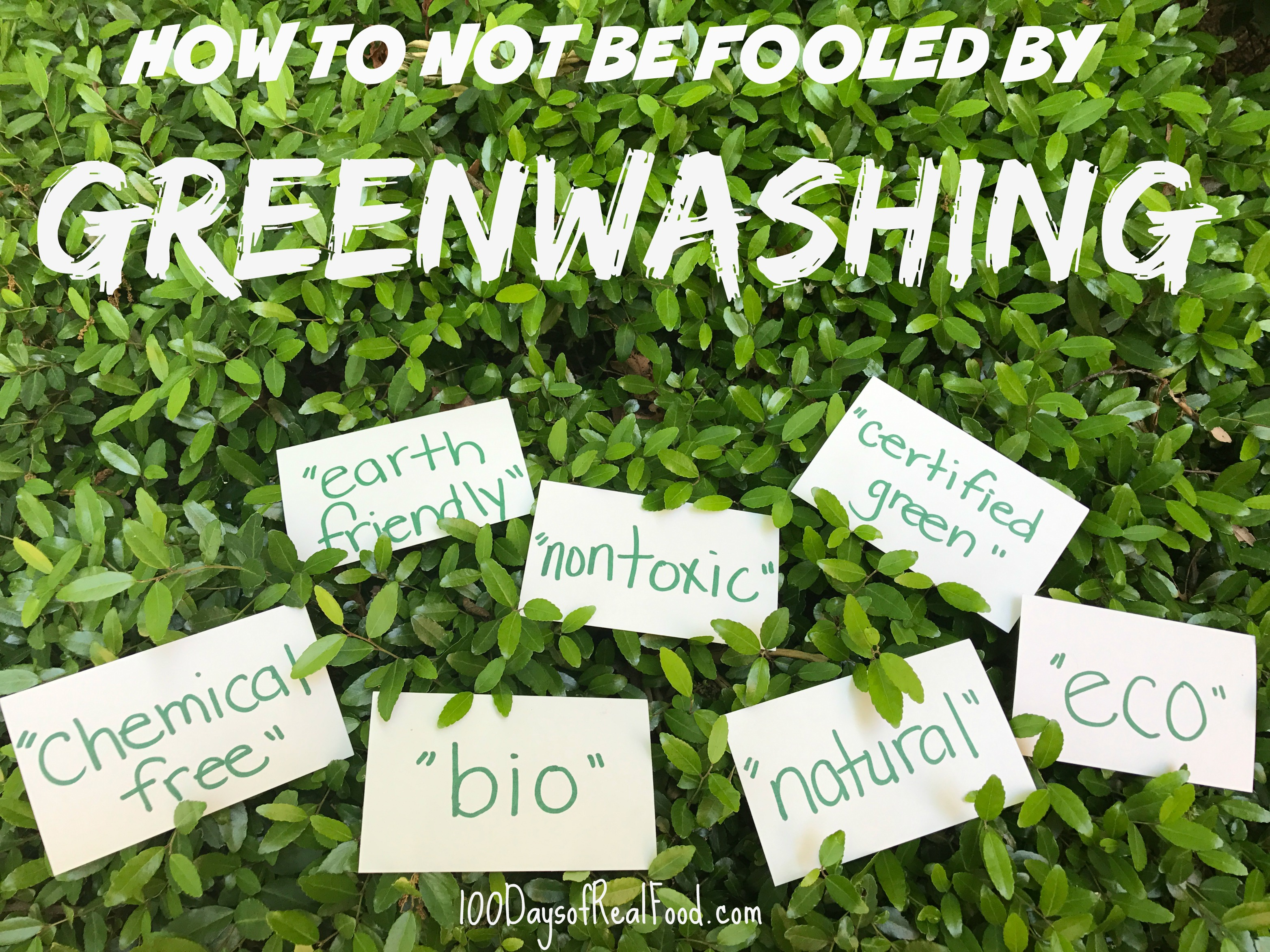 What Is 'Greenwashing'?