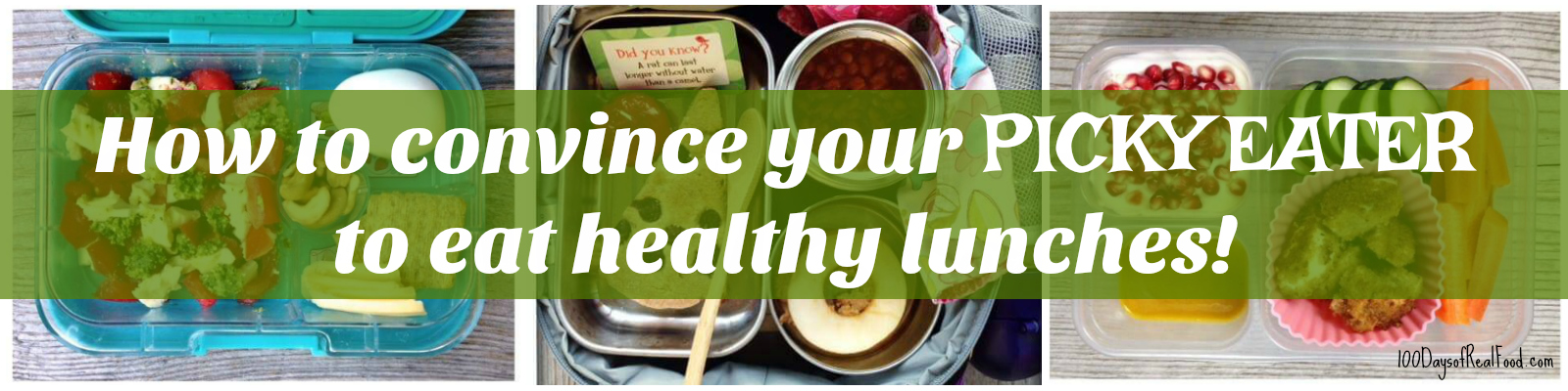 How to convince your picky eater to eat healthy lunches on 100 Days of Real Food