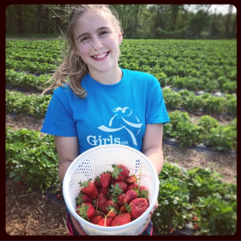 Picking Strawberries on 100 Days of Real Food