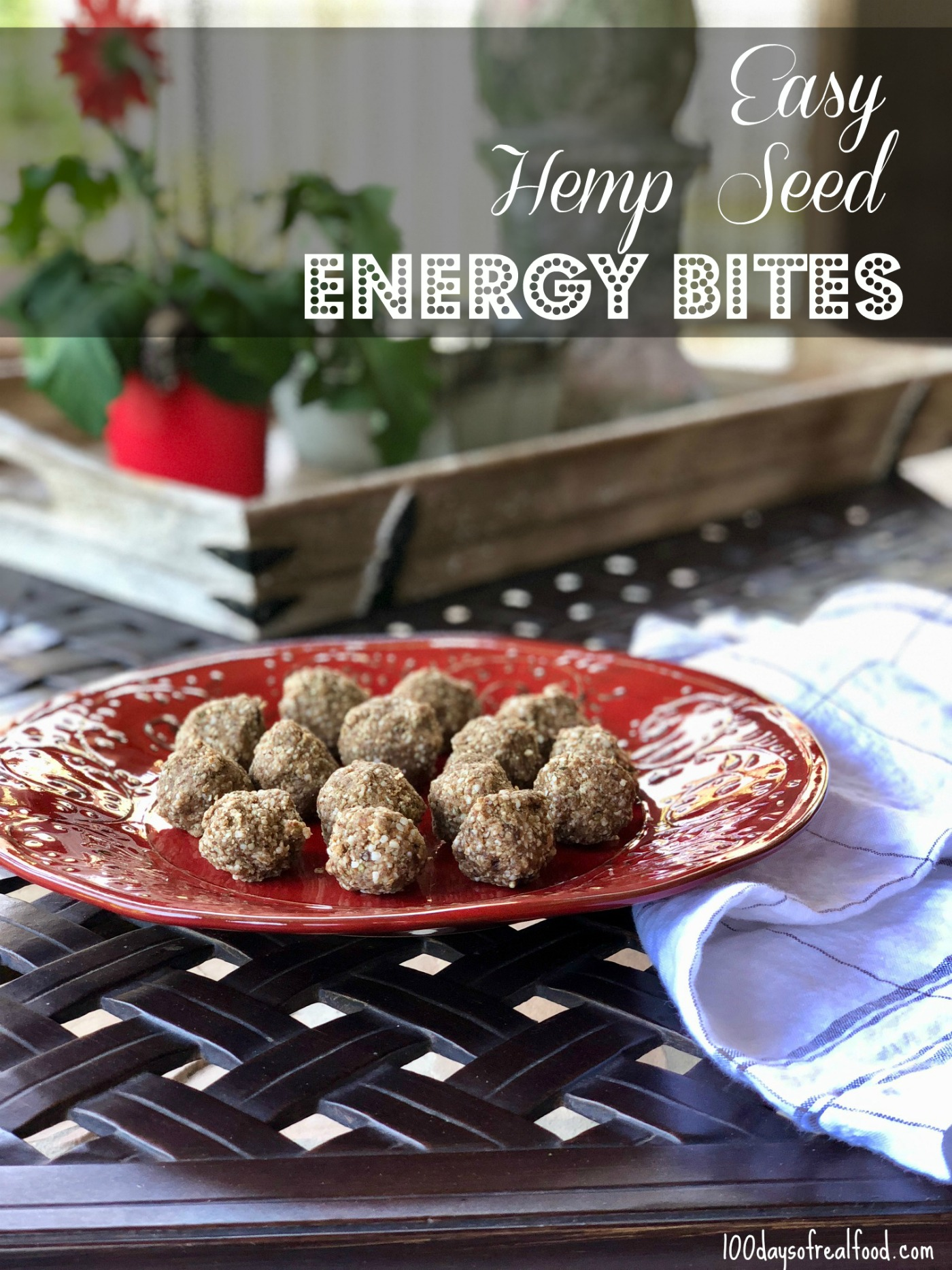 Hemp Seeds What They Are How To Use Them 100 Days Of Real Food