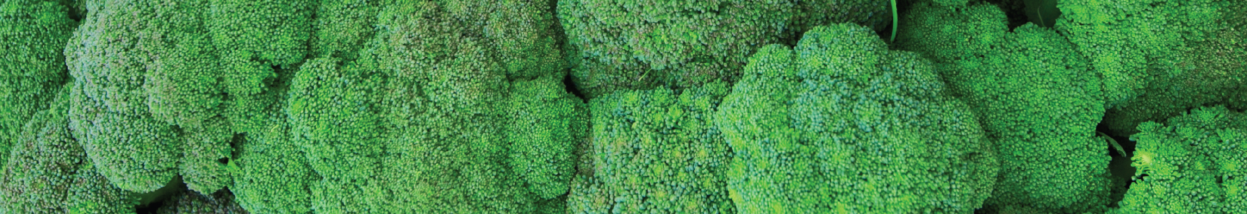 broccoli on the clean fifteen