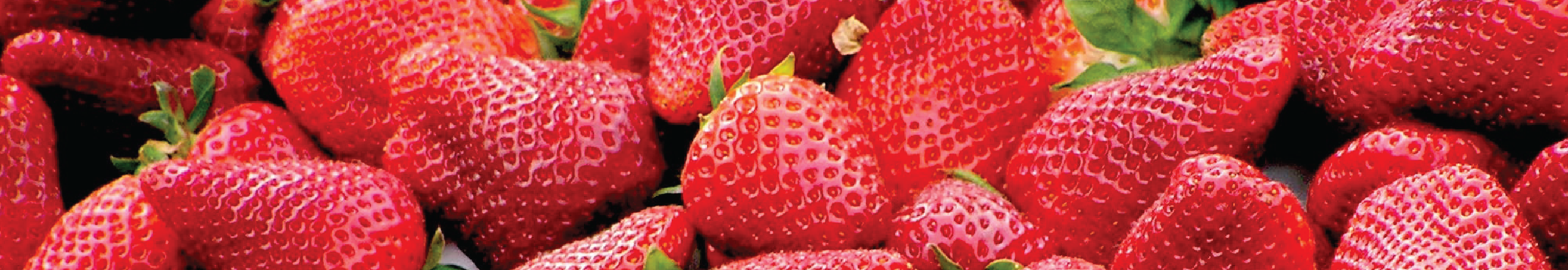 strawberries on the dirty dozen
