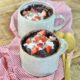 Homemade Chocolate Mug Cake on 100 Days of Real Food