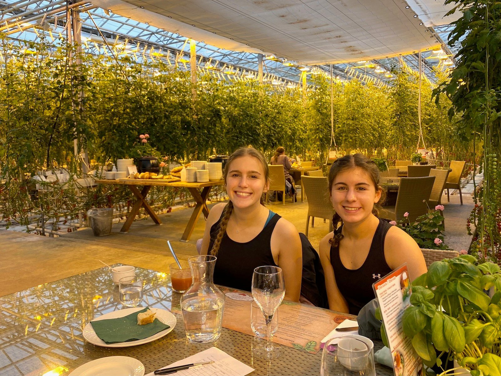 Sisters sitting at table at the Friðheimar Greenhouse Restaurant.