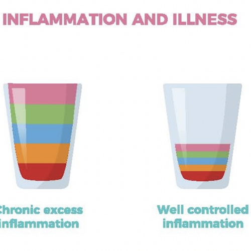 Illustrating the analogy of a cup of inflammation