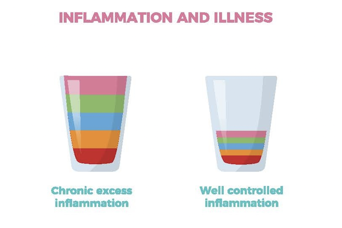 Inflammation and Illness diagram.